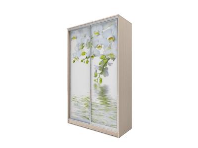 Шкаф-купе Хит 2-х дверный Орхидея Дуб млечный